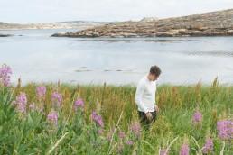 Skärgård och sommarblommor, Thomas Sjögren